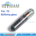 IDT5 chip glass