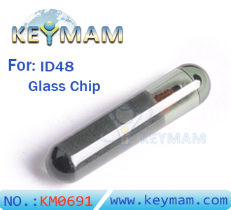 blank ID48 chip glass